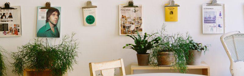 Image for Gramercy Row Roanoke Apartments Article About Eco-Friendly Decorating Tips, shows salvaged wood kitchen table and chairs, potted plants, and magazine articles on clipboards hanging on the wall in neat rows